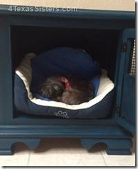 dog-bed-cabinet-4